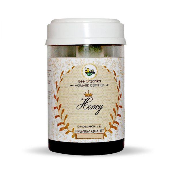 AGMARK Special Grade Honey